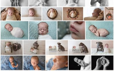 Baby Harley rocks his newborn session